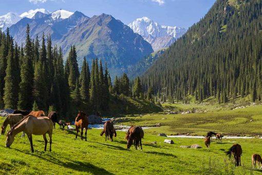 Kirghizstan-LacIssykKul