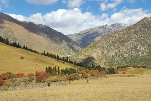 Vallée Eki Naryn, Kirghizistan